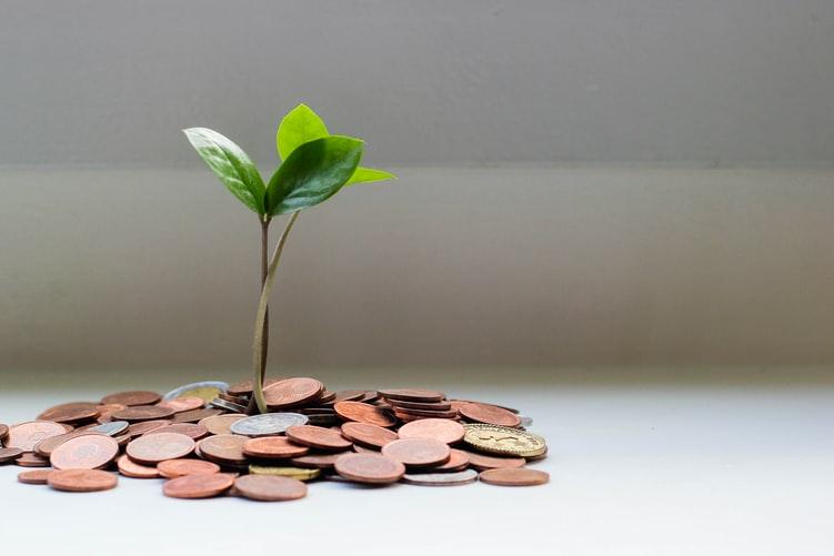 """A imagem mostra diversas moedas e, acima delas, uma muda de planta. Numa alusão a """"dinheiro crescendo"""""""